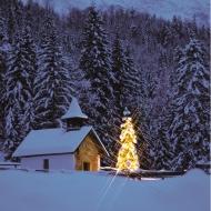Weihnachtsfeiertage Öffnungszeiten
